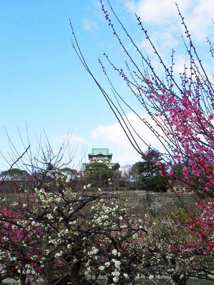 大阪~神戸4.jpg