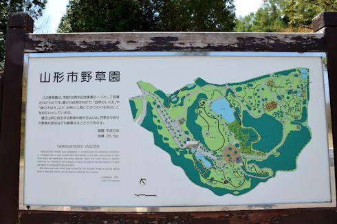 山形野草園1.jpg